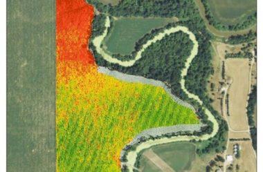 NDVI com Drones: A saúde da vegetação através de imagens