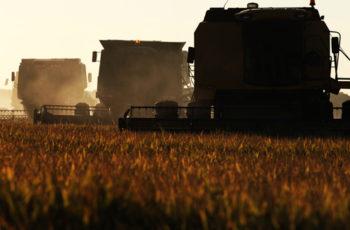 Novo salto de qualidade na agricultura brasileira