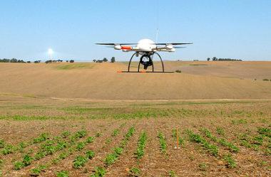 Mapeamento aéreo com drones auxilia em decisões de manejo