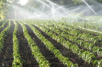 Drone vai ajudar municípios fluminenses a monitorar uso da água na agricultura