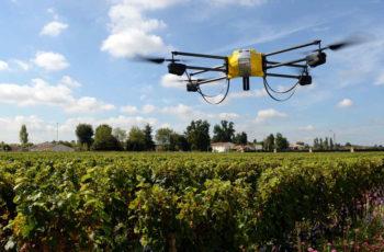 Drones vão melhorar a indústria de alimentos