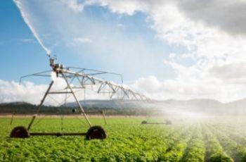 Drones: ferramenta cada vez mais importante para agricultores