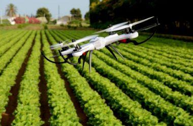 Agricultura Digital: entenda o passo a passo!